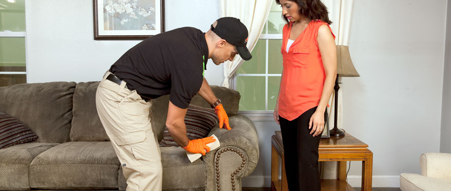 Poway, CA carpet upholstery cleaning